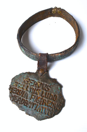 Slave collar with tag asking the finder to return the slave
