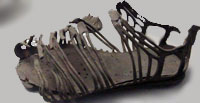 "A Roman soldier's sandal, or ""caliga"""